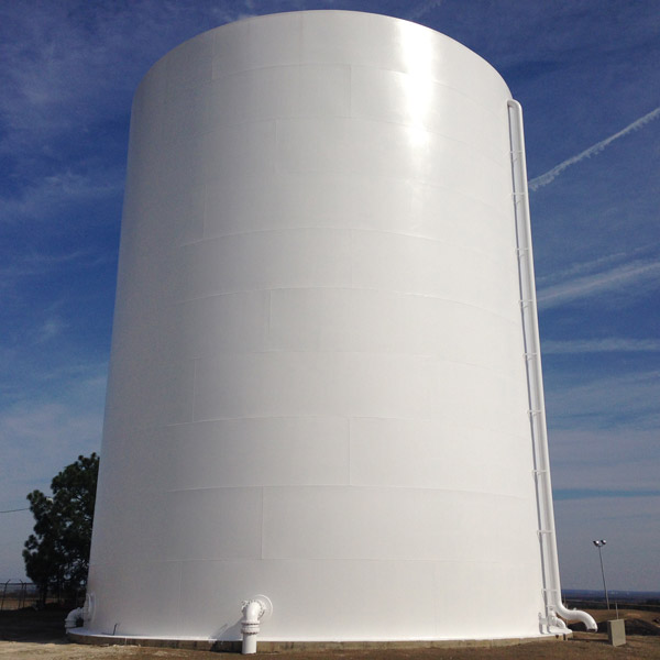 The Cayce Water Tank is now South Carolina's largest canvas.